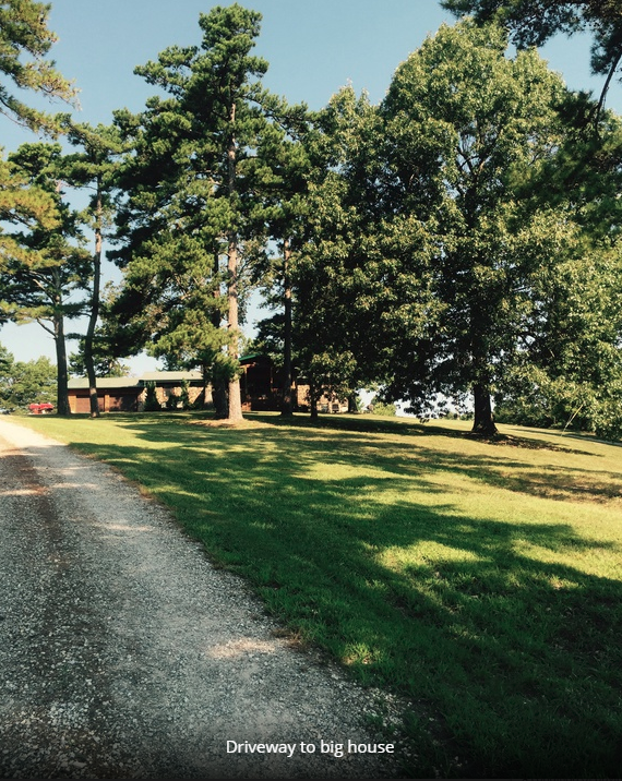 Driveway leading from south 14 to hilltop house